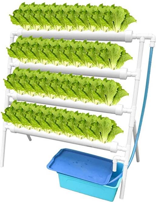 Kit-cultivo-hidroponico