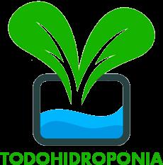 Cultivo en hidroponia